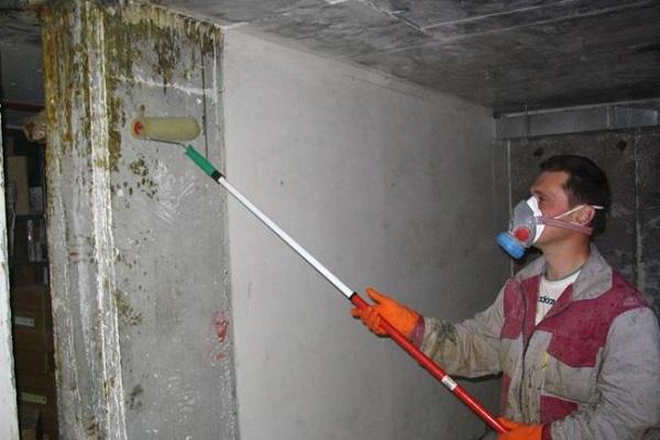 Антисептик для бетона Нортекс